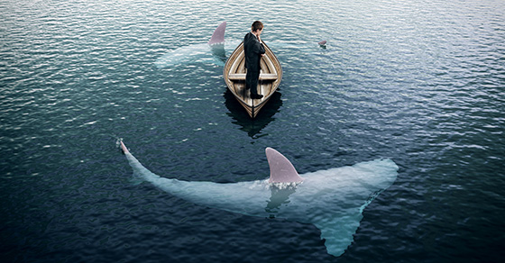 Canoe in the water with sharks circling