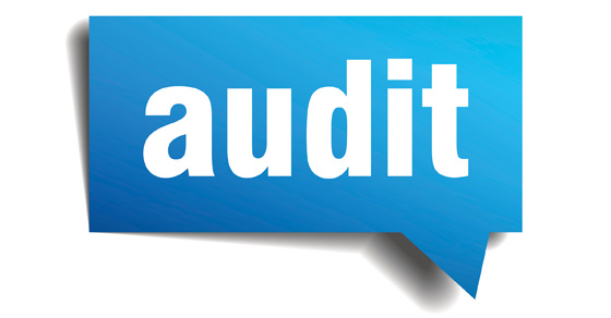 The word AUDIT